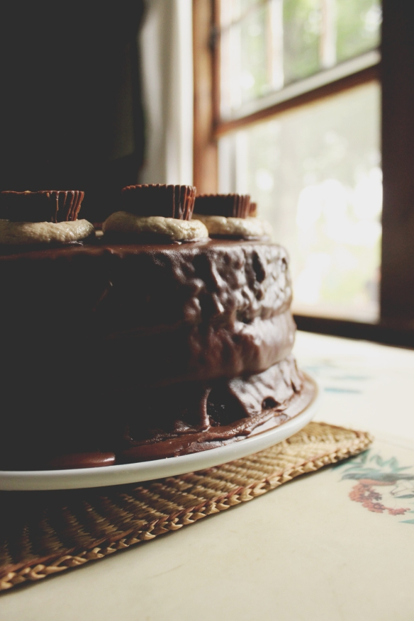 gm_ChocolatePeanutButterCake_2