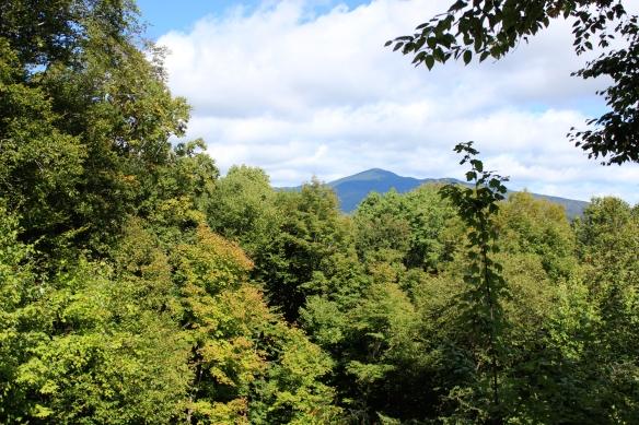 gm_Vermont2015_1
